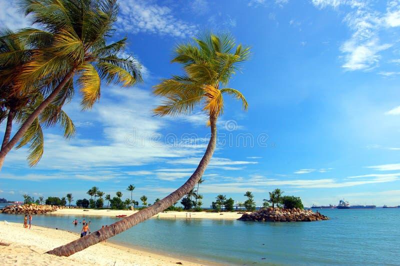 Beach. A beach under a suny day