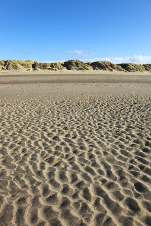 Free Beach Stock Images - 8072014