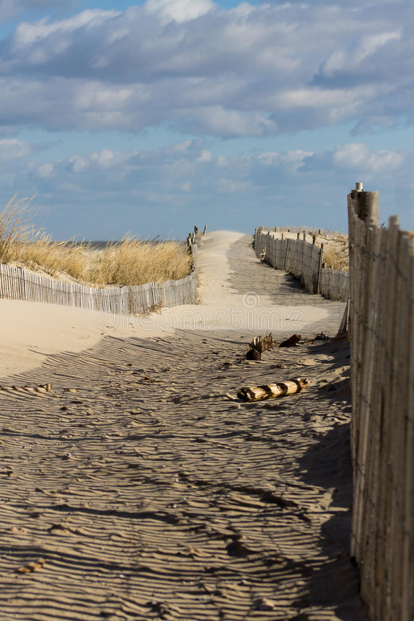 Beach Access. Cape Henlopen State Park, DE royalty free stock images