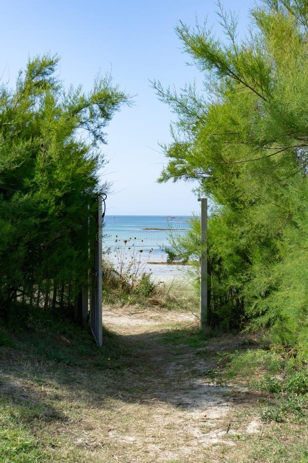 Beach access gate genom ett stängsel och tjocka gröna buskar leder till en fin strand och ett lugnt blått och turkott hav royaltyfri bild