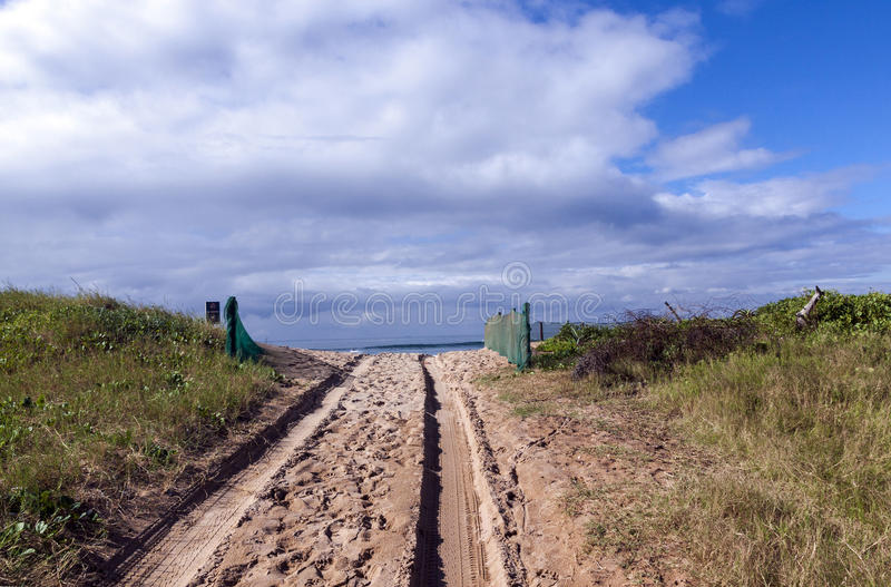 Beach Access Road and Tire Tracks on Sand Dune. Beach access road lined with green shade cloth netting over sand dunes onto beach in Durban, South Africa royalty free stock photo