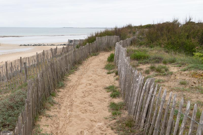 Beach access wooden fence protecting the dune by the seaside stock photo