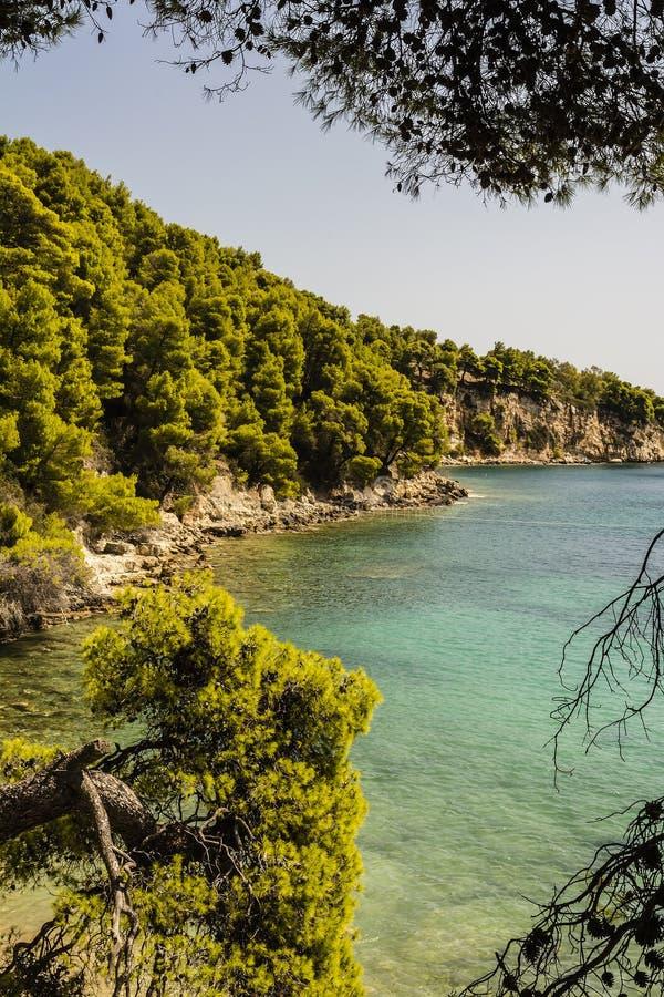 Beach of alonissos, Greece stock images