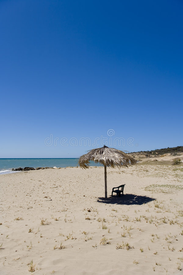 Free Beach And Palms Umbrella Royalty Free Stock Images - 1971649