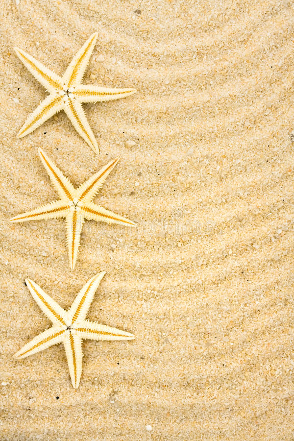 Free Beach Background Stock Photo - 13116930