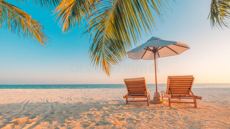 Beach background. Beautiful beach landscape. Tropical nature scene. Palm trees and blue sky. Summer holiday and vacation concept. stock images