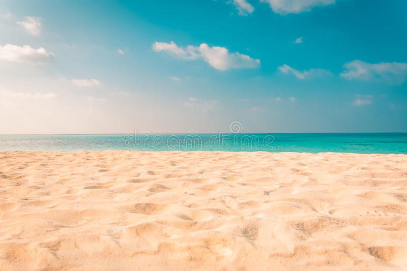 Beach background. Beautiful beach landscape. Tropical nature scene. Palm trees and blue sky. Summer holiday and vacation concept. Vacation holidays background stock image
