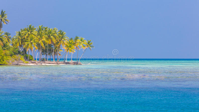 Beach background. Beautiful beach landscape. Tropical nature scene. Palm trees and blue sky. Summer holiday and vacation concept. Vacation holidays background stock photos