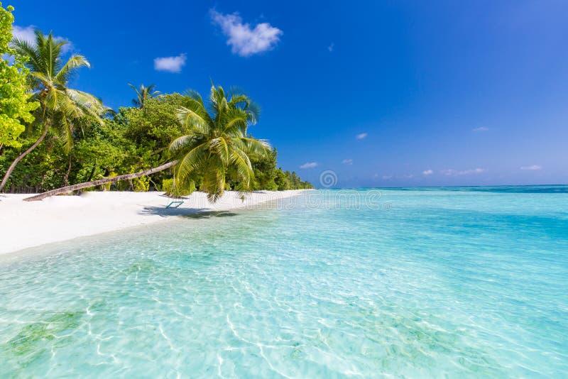 beach background beautiful beach landscape tropical
