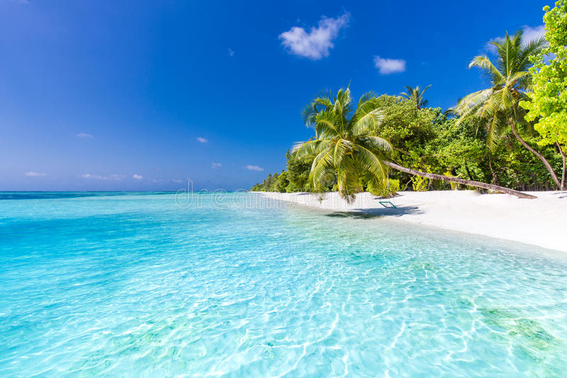 Beach background. Beautiful beach landscape. Tropical nature scene. Palm trees and blue sky. Summer holiday and vacation concept. Vacation holidays background stock photography