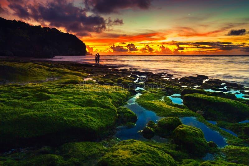Beach Bali royalty free stock image