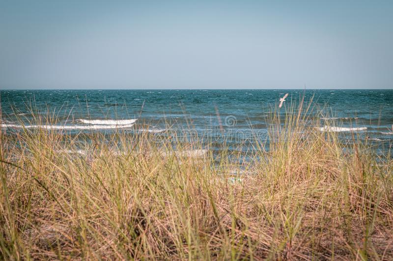 The beach of the Baltic Sea wind and swell. A beach of the Baltic Sea wind and swell stock photos