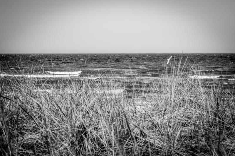 The beach of the Baltic Sea wind and swell. A beach of the Baltic Sea wind and swell stock photography
