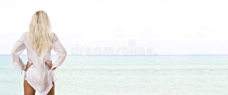 Download Beach banner stock photo. Image of natural, enjoy, elegant - 10895324