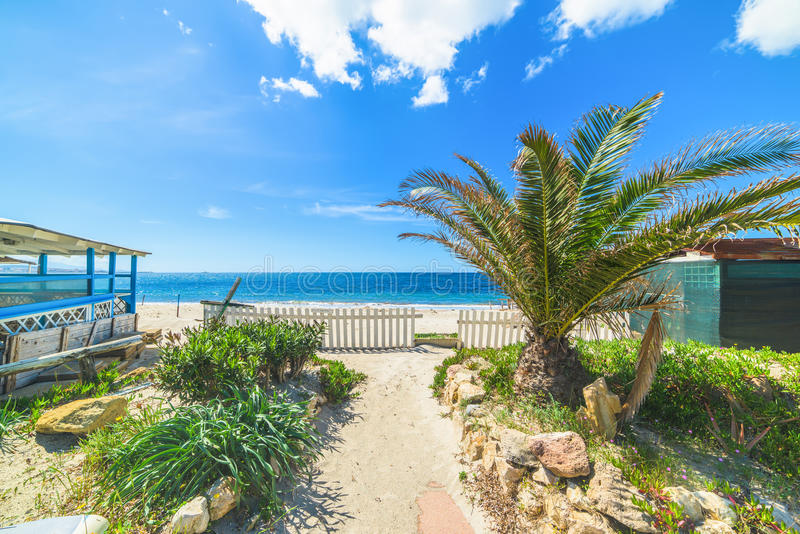 Beach bar with palms. By the sea stock image