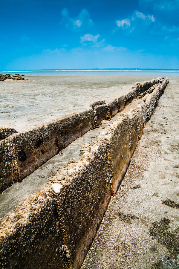 Download Beach and Barnacles stock image. Image of sand, still - 26100697