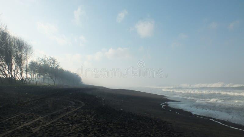 Beach baru, Central Java Indonesia. Morning atmosphere on the beach baru, Central Java Indonesia royalty free stock photos