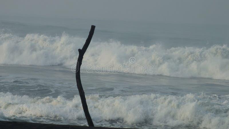 Beach baru, Central Java Indonesia. Morning atmosphere on the beach baru, Central Java Indonesia stock photo