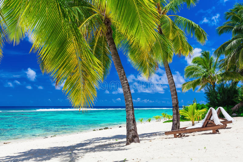 Beach beds under coconut palm trees with an ocean view, Cook Isl. Beach beds under coconut palm trees with an ocean view, Rarotonga, Cook Islands stock photos