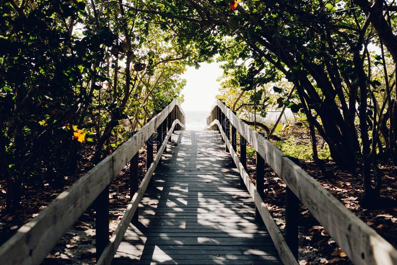 Beach, Boardwalk, Bridge, Daylight Free Public Domain Cc0 Image