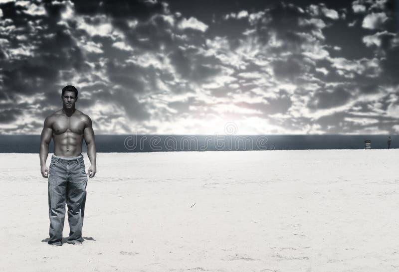 beach bodybuilder στοκ φωτογραφίες με δικαίωμα ελεύθερης χρήσης