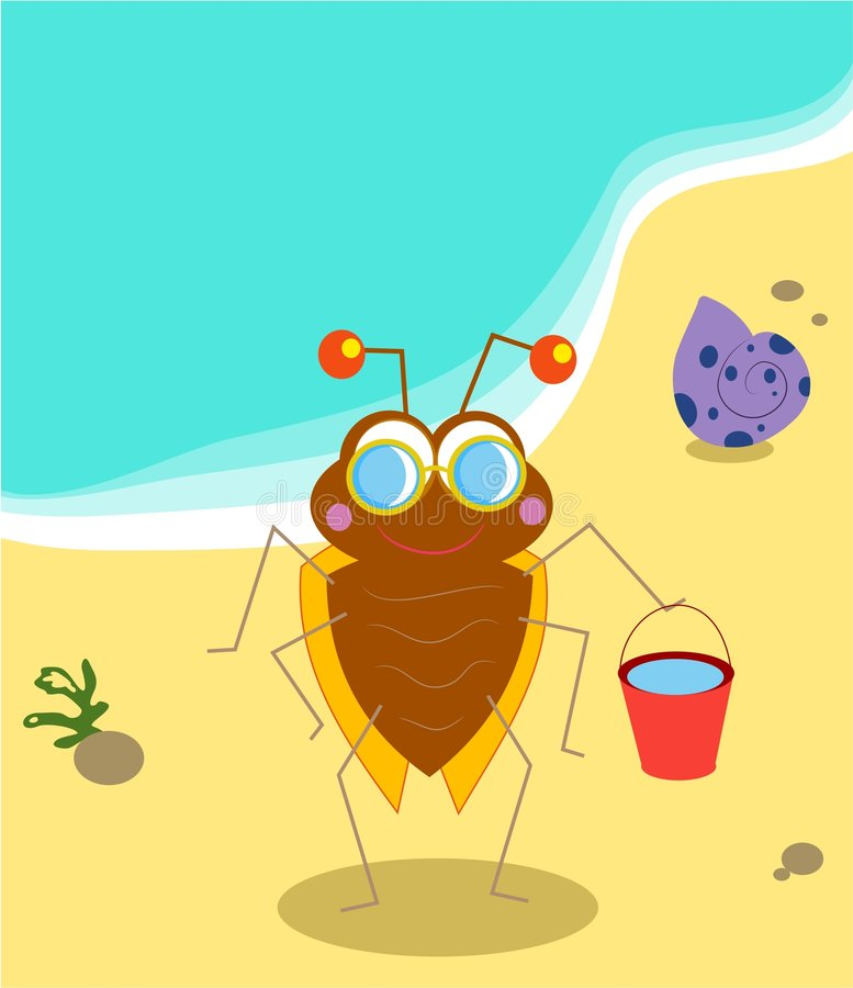 Beach Bug vector illustration