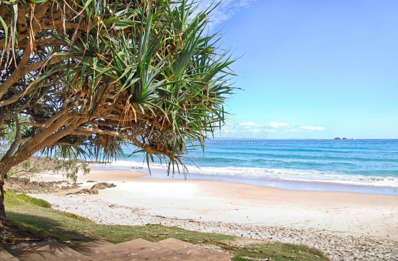 Beach in Byron Bay in Australia. Watergoes Beach in Byron Bay in Australia royalty free stock photography