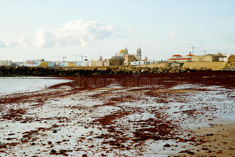 Beach in Cadiz royalty free stock photography