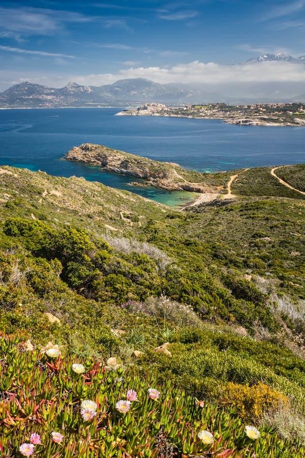 Beach, Calvi, sea and mountains from La Revellata in Corsica