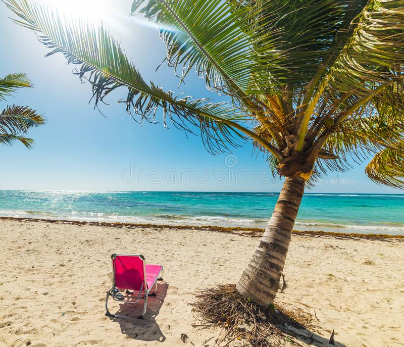 Guadeloupe Beach: Beach Chair In Bas Du Fort Beach In Guadeloupe Stock Photo