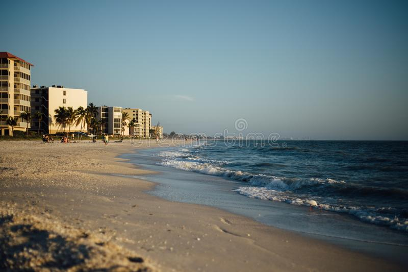 Beach, City, Ocean royalty free stock photo