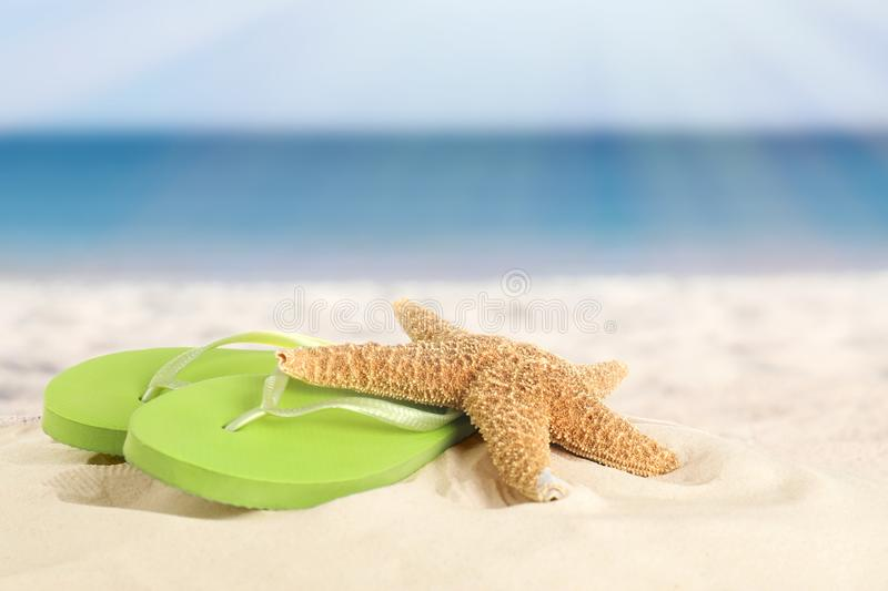 Beach with clean hot sand on sunny day, closeup. royalty free stock images