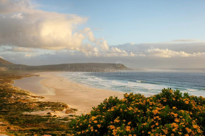 Download Beach, Clouds and Flowers stock photo. Image of scenic - 15831658