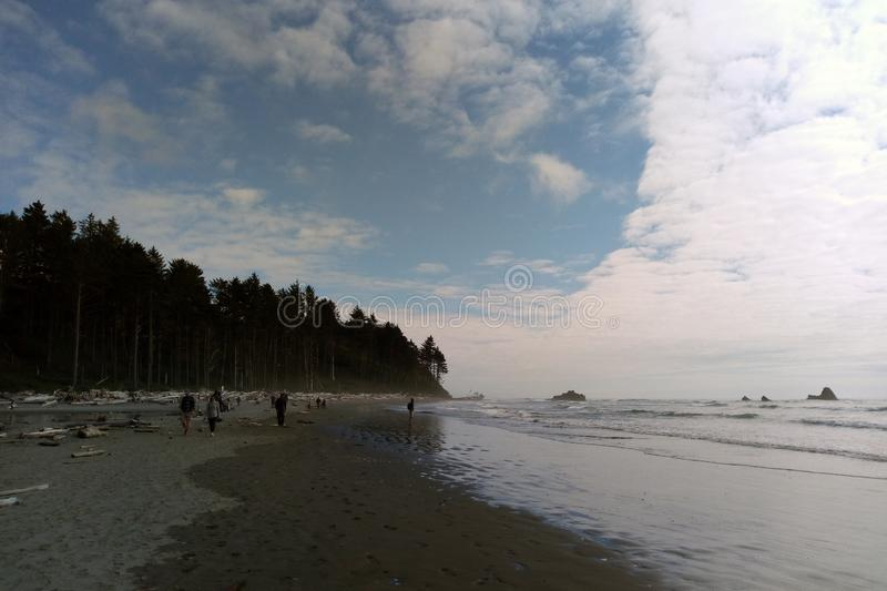 Beach coastline in the Olympic National Park, the Olympic Peninsula near Seattle.  stock images