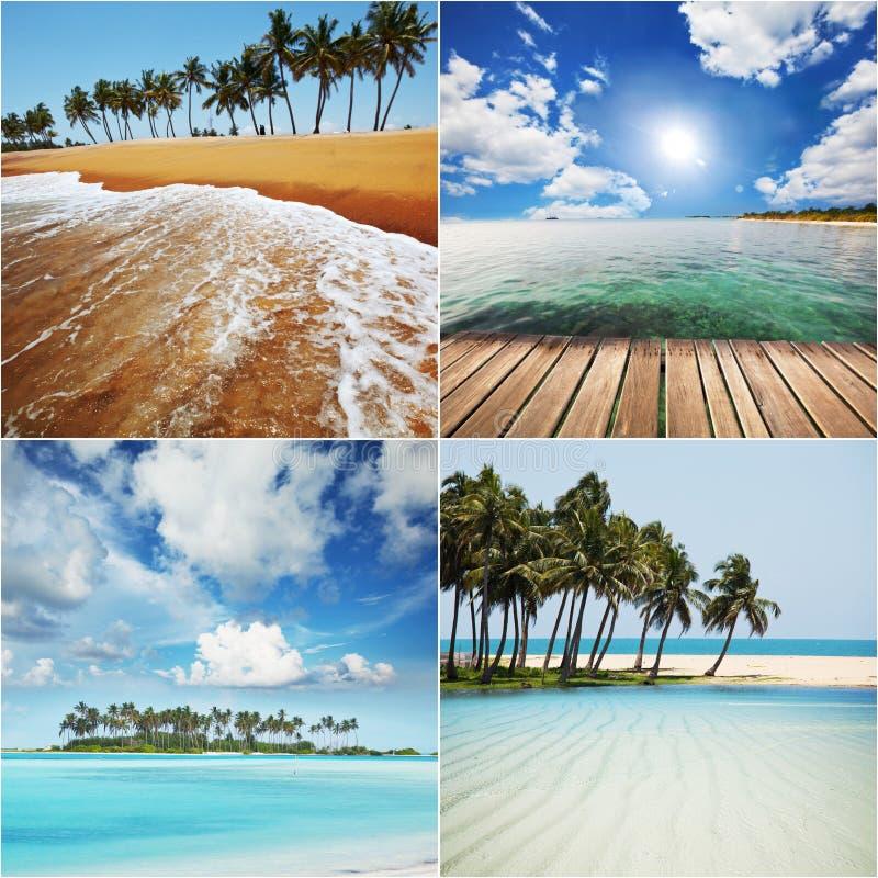Beach collage. Beach background stock photos
