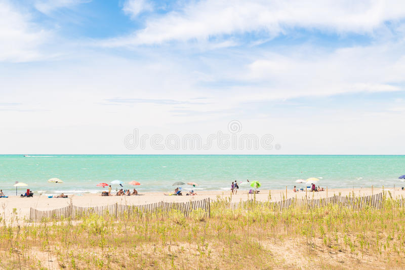 Download Beach With Colorful Umbrellas, Wooden Fences And Wildlife. Stock Image - Image of grass, coast: 83724085