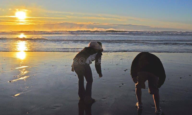Beach Combing royalty free stock photo