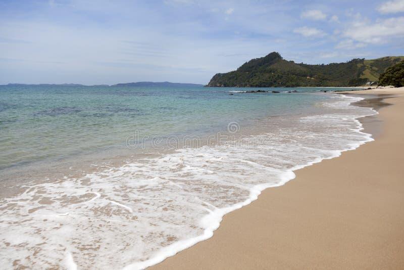 Download Beach at Coromandel stock photo. Image of sand, coromandel - 28714994