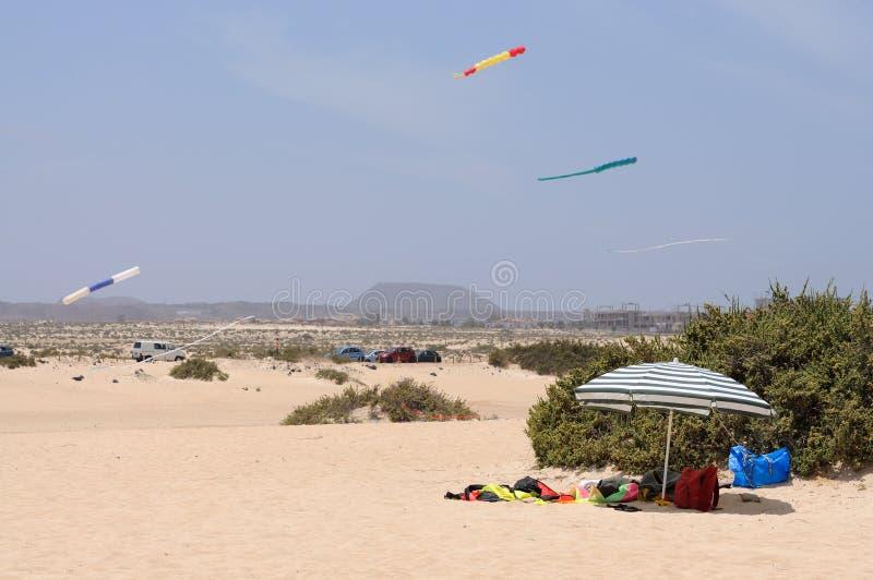 Beach at Corralejo, Fuerteventura, Spain stock image