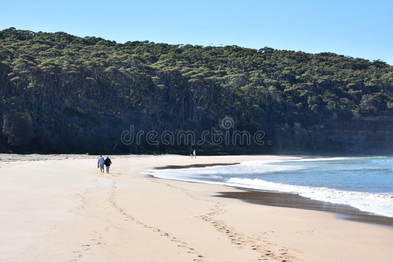 Beach Couples stock images