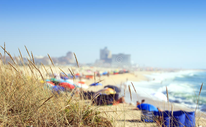 Download Beach stock photo. Image of green, concepts, colourful - 32879508