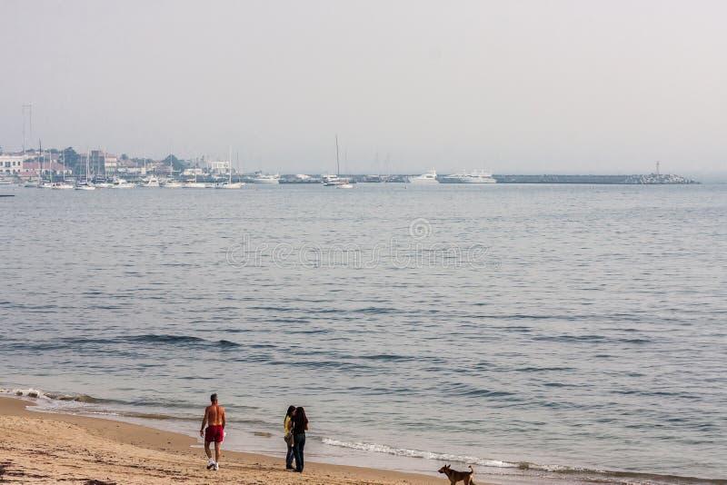 beach del este punta乌拉圭 免版税库存照片
