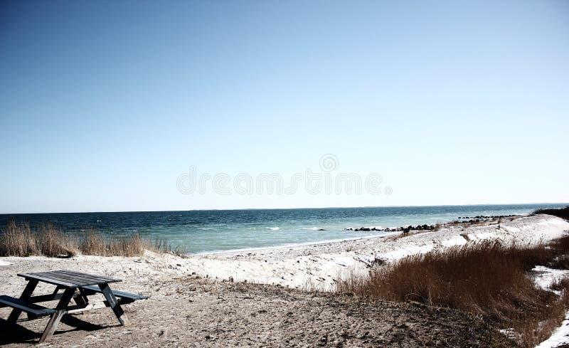 Beach in Denmark royalty free stock photos