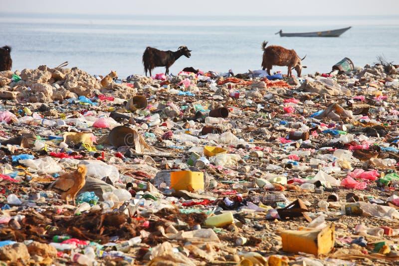 beach dump στοκ εικόνες