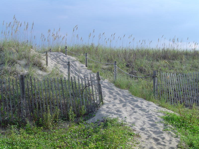 Beach dune pathway with fence. Grassy beach dune with rope fence sand pathway and picket fence border stock photography