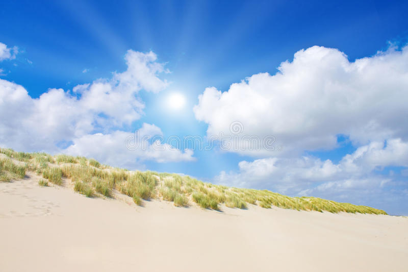 Beach and dunes royalty free stock photos