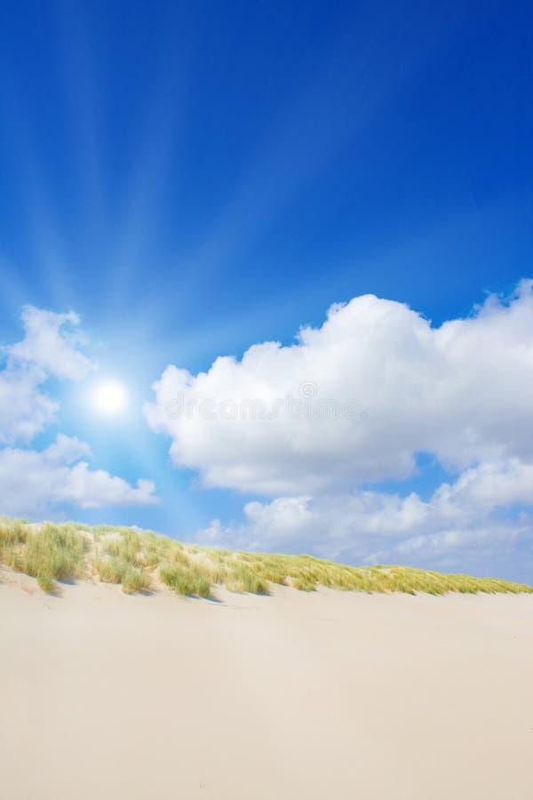 Beach and dunes stock image