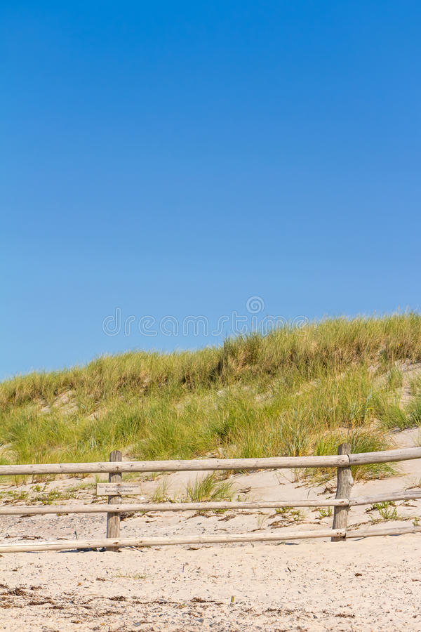 Beach and dunes with beachgrass. In summer at the Baltic Sea, Germany stock photo