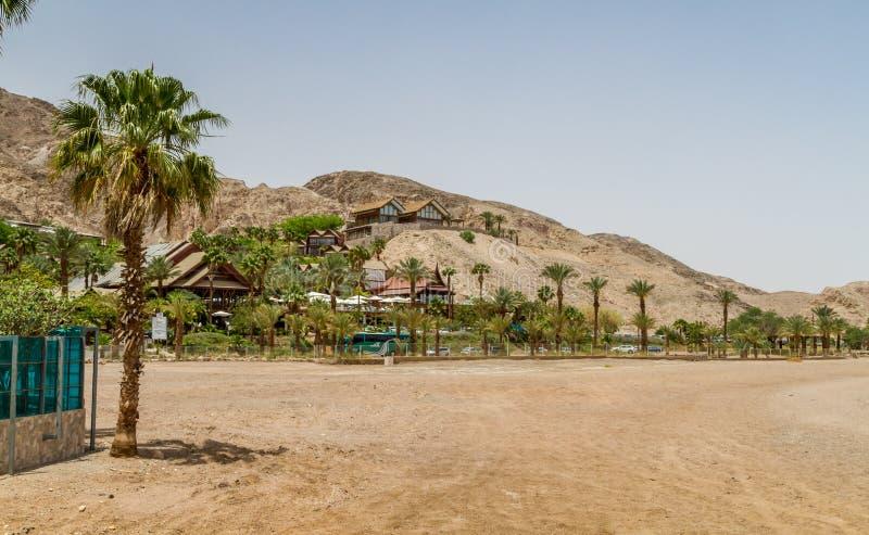 Beach of Eilat city, Red Sea, Israel stock photo