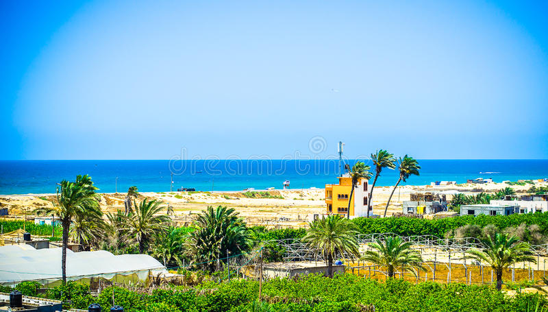 Beach farms !. This photo shows the a view to Khanyounis beach in the south of Gaza Strip Palestine, and some farms of the people, this area known among the stock photo